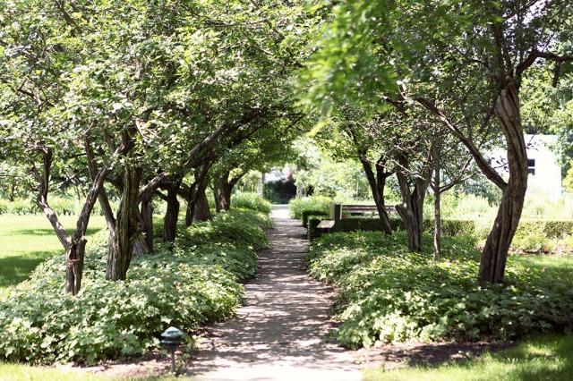 Ten Broeck Garden